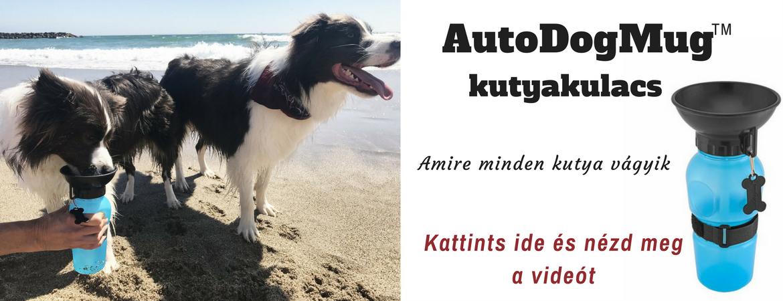 kutya-itato-kutyakulacs-autodogmug