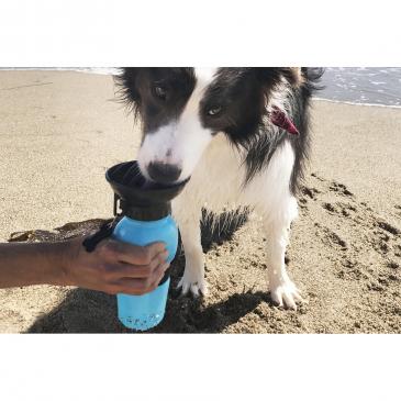 Nagy AutoDogMug kutyakulacs