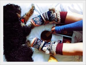 Kutyabarát-Karácsony-közös- pihi-a-kanapén