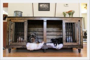 kutyafekhely-otletes-kialakitasu-trendi-kutyaagy